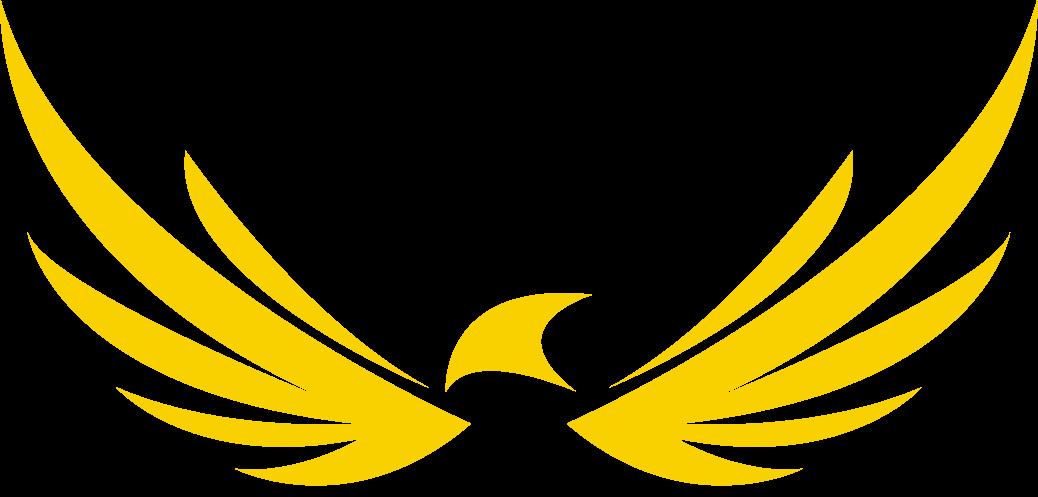 Eagle Eye PRO